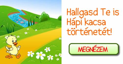 hapi_vers