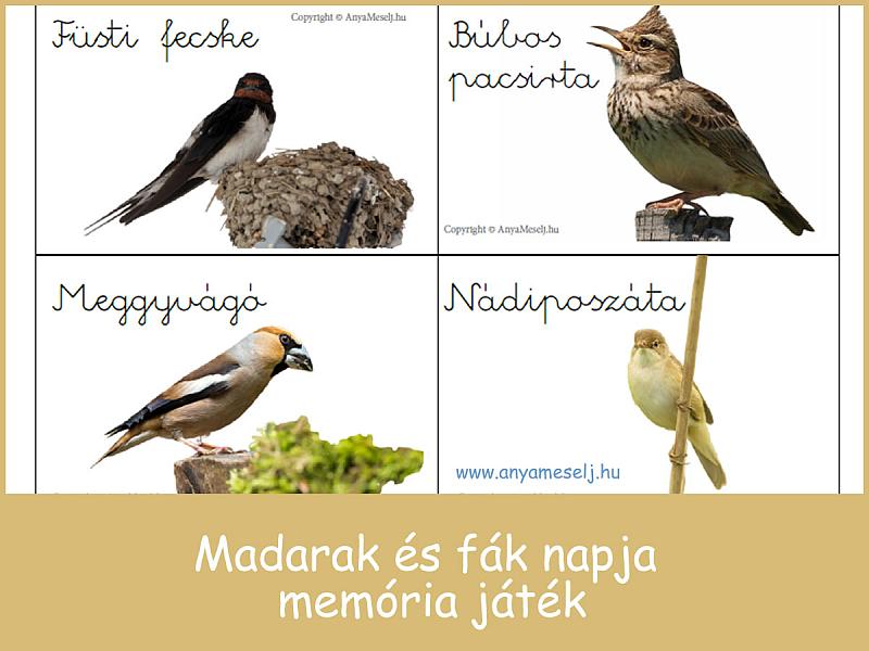 Madarak és fák napja memóriajáték